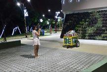 La carreta del parque Espíritu del Manglar
