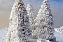 Snow sculptures (*^^*)