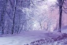 Зимняя  / Красивые зимние виды
