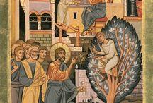 Images Vie du Christ