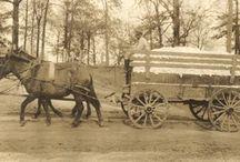 Alabama History / Photos of Alabama's rich and diverse history.