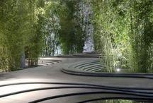Architecture x Nature
