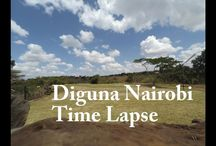 Time Lapses Nature