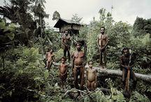 """Mizející kmeny - Korowaiové (Jihovýchodní Papua, odhadovaný počet obyvatel asi 3.000 lidí) / """"Nedělá-li ruka nic, ústa nic nežvýkají."""" Jižně od pohoří Jayawijaya v indonéské Papui leží velká nížinatá plocha. Oblast pojímá nesčetné řeky, vytvářející roszáhlých bažiny, mokřady a mangrovové pralesy. Je to oblast kde žije kmen Korowai, který až do začátku roku 1970 věřil, že jsou jedinými lidmi na zemi."""