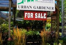 Garden Center for Sale!