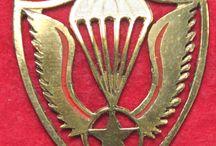 Parachutisten wings en insignes