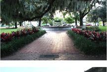 Travel Savannah