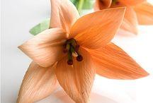 cornhusks flower