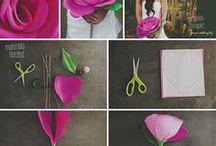 ruža / postup paierova ruža