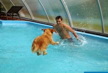 Customers photos of enclosures / Patio enclosures and pool enclosures photos from our customers. See how people live under our enclosures.