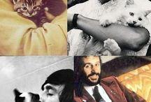 Celebrities & pets