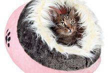 Tout pour mon chat / De nombreux articles spécialement conçus pour les chats : arbres et griffoirs, couchage, ... Toujours aux prix les plus bas chez OOGarden