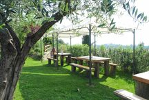Last Minute Offers from Cascina Crocelle / #LastMinute on Farmhouse Cascina Crocelle Garda Lake