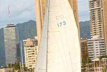 Oahu Sailboat Races