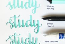 Study & Notes
