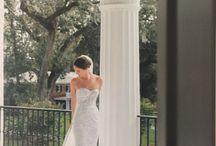 Dina Alonzi Brides