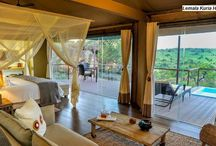 Tanzania Safaris, Camps & Lodges / Camps, lodges, tours and excursions in Tanzania