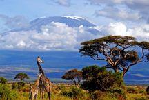 AFRICA,mis recuerdos!!!!!