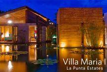 Punta Mita Inspired