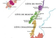 Burgundy Wine Region