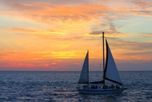Siesta Key Sunsets / by Siesta Sports Rentals Siesta Key
