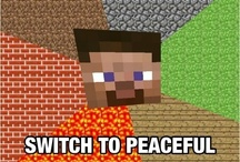 MineCraft / All about the MineCraft