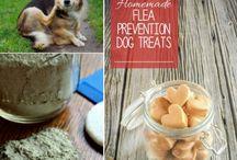 Pet tips and treats