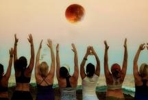 Ylang Ylang Yoga Studio / Daily morning yoga classes at 8:30am and special Full Moon yoga sessions / by Ylang Ylang Beach Resort