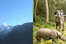 Chitwan National Park And Poon Hill Trek