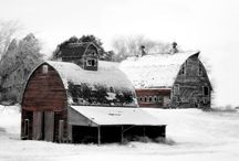 Old Barns / by Danielle Pavao
