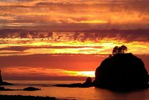 La Push / This is my happy place  / by Debbie Foster Branaa
