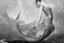 Sea Creatures/Mermaids