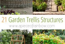 Vertical Gardening / Ideas and inspiration for growing fruits and vegetables vertically in the garden or flower bed.