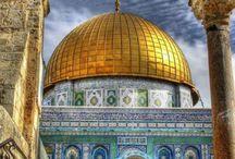 next stop israel