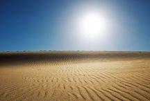 Sivatag, homok