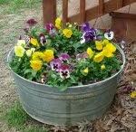 baççeee,garden idea