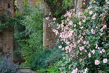 gardening / Medieval, wild, awesome gardens