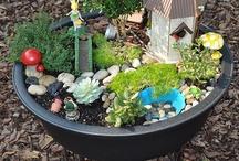 Garden y Cactus
