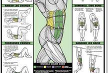 Health & Fitness - Core