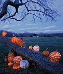 Fabulous Pumpkins / Creative and stylish pumpkin ideas!