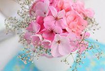 Teacup flowers <3