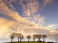 Dan ..Yr2..Landscape photgraphers