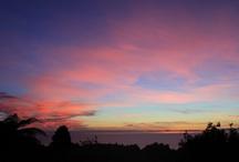 Views / Some of the most stunning views from Te Nikau Retreat www.tenikauretreat.co.nz