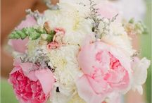 Dream wedding / by Taylor Heckman