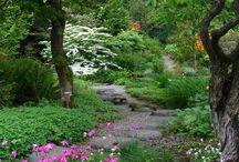 Szépséges kertek