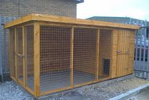 Dog kennel / by Suzy Morrow