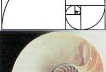 math / by EJ O'Connor