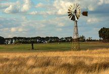 16006 Mt Gilead - Windmill