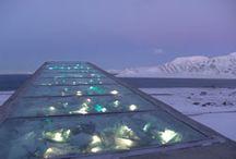 Svalbard/Tromsø / Trip planning from Oslo to Tromsø to Svalbard and everything in between! / by Katie Clifford