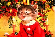 cats & christmas